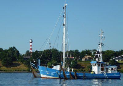 La pêche durable, une activité en plein essor en France et dans le monde